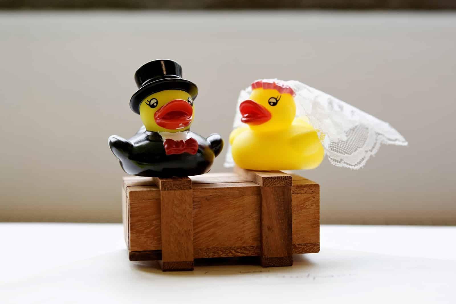 Hochzeits-Tipps vom Hochzeits-Experten